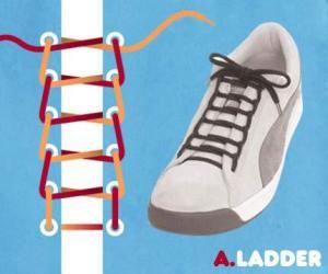 cara mengikat tali sepatu model ladder - salofa - instagram